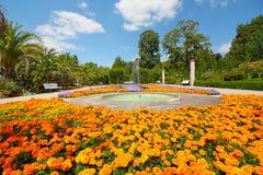 Kleurrijke bloemen in een park met palmen royalty-vrije stock afbeeldingen
