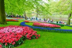 Kleurrijke bloemen en bloesem in Nederlandse de lentetuin Keukenhof Royalty-vrije Stock Foto's