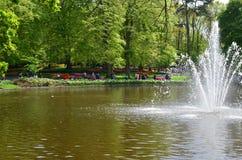 Kleurrijke bloemen en bloesem in Nederlandse de lentetuin Keukenhof Royalty-vrije Stock Fotografie