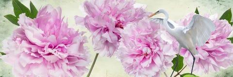 Kleurrijke bloemen en witte reigergrens Royalty-vrije Stock Afbeelding