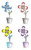 Kleurrijke bloemen in potten Stock Afbeelding