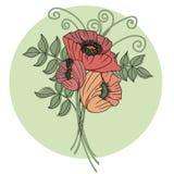 Kleurrijke bloemenachtergrond met papavers Royalty-vrije Stock Foto's