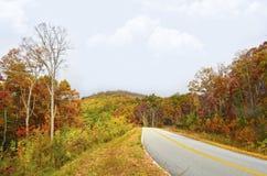 Kleurrijke Bomen aan de Kant van een Buigende Bergweg Royalty-vrije Stock Afbeeldingen