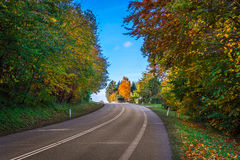 Kleurrijke bomen door een wegkromme Royalty-vrije Stock Afbeeldingen