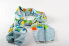 Kleurrijke bont Indische geïsoleerde sjaal Royalty-vrije Stock Afbeelding