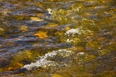 Kleurrijke borrelende stroom met heldere rotsen royalty-vrije stock afbeeldingen