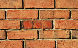 Kleurrijke brickwallachtergrond Royalty-vrije Stock Foto's