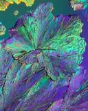 Kleurrijke citroenzuurkristallen royalty-vrije stock foto's