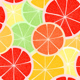 Kleurrijke citrusvruchtenachtergrond Royalty-vrije Stock Afbeelding