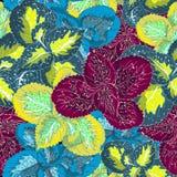 Kleurrijke, creatieve Hawaiiaanse naadloze het patroonvector van wildernisbladeren Royalty-vrije Stock Afbeelding