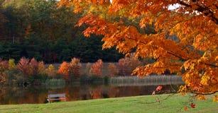 Kleurrijke dag stock afbeelding