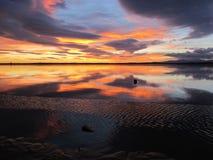 Kleurrijke dageraad Stock Afbeelding