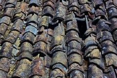 Kleurrijke daktegel Stock Foto's
