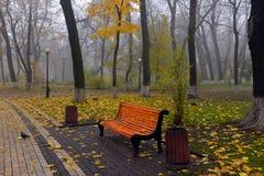 Kleurrijke de herfstbomen met vergeeld gebladerte in het de herfstpark Royalty-vrije Stock Foto