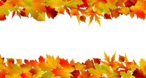 Kleurrijke de herfstgrens die van bladeren wordt gemaakt. EPS 8 Stock Fotografie