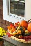 Kleurrijke de herfstinzameling van pompoenen op lijstou Royalty-vrije Stock Afbeeldingen