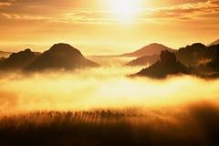 Kleurrijke de herfstochtend in berglandschap Dramatische donkere hemel Het nationale park van Saksen, Europa Karpatisch, de Oekra Stock Fotografie