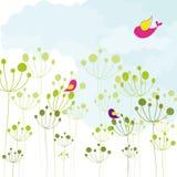 Kleurrijke de vogels groene bloemenachtergrond van de lente Stock Foto's