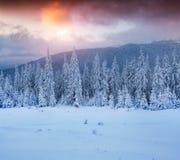 Kleurrijke de winterzonsondergang in bergen Royalty-vrije Stock Foto's