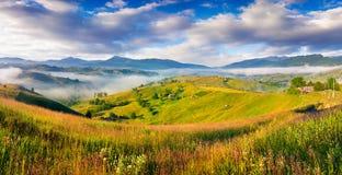 Kleurrijke de zomerochtend in Karpatisch bergdorp Stock Foto