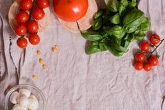 Kleurrijke de zomersalade stock afbeelding