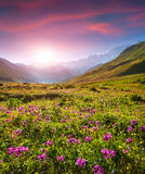 Kleurrijke de zomerzonsopgang in de Kaukasische bergen Royalty-vrije Stock Foto's