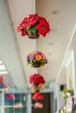 Kleurrijke decoratie kunstbloem Royalty-vrije Stock Foto