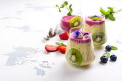 Kleurrijke detox gelaagd smoothie met natuurlijke eetbare bloemen, bessen en munt royalty-vrije stock fotografie