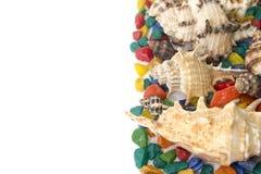 Kleurrijke die achtergrond van shells op een wit wordt gemaakt Royalty-vrije Stock Fotografie