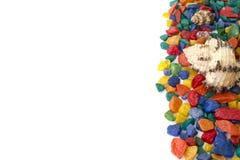 Kleurrijke die achtergrond van shells wordt gemaakt Royalty-vrije Stock Fotografie