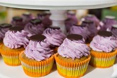 Kleurrijke die cupcakes met bessenroom wordt bedekt Stock Foto