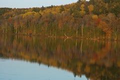 Kleurrijke die de herfstbomen in een Maine-meer worden weerspiegeld Stock Foto's