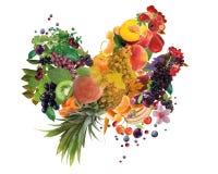 Kleurrijke die haan en kip van fruit wordt gemaakt - het jaarsymbool van 2017 Stock Afbeelding