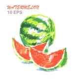 Kleurrijke die hand van watermeloen wordt getrokken Vector illustratie Stock Illustratie