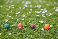 Kleurrijke die paaseieren in het groene gras worden verborgen Stock Fotografie