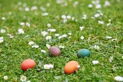 Kleurrijke die paaseieren in het groene gras worden verborgen Stock Foto