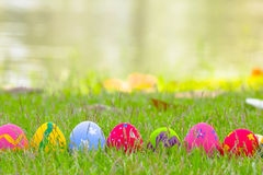 Kleurrijke die paaseieren met bloemen in het gras worden verfraaid Stock Foto's