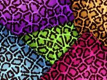 Kleurrijke dierlijke huid Royalty-vrije Stock Foto's