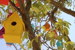 Kleurrijke duiventillen op een boom Stock Foto
