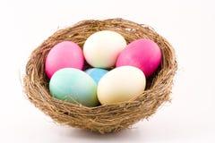 Kleurrijke Eieren in Nest Royalty-vrije Stock Afbeelding