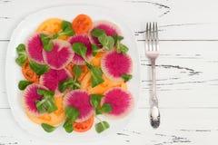 Kleurrijke en gezonde carpacciosalade met watermeloenradijs, tomaat en maïssalade Hoogste mening, de ruimte van het vrije tekstex Stock Fotografie