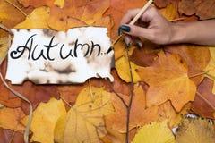 Kleurrijke en heldere achtergrond van de herfstbladeren de inschrijving is de herfst op perkamentperkament door een vrouwen` s ha Royalty-vrije Stock Foto's