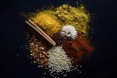 Kleurrijke en Smakelijke Kruiden royalty-vrije stock foto