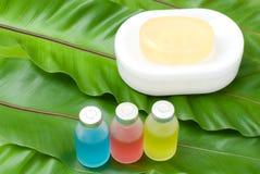 Kleurrijke essentiële olie en zeep Royalty-vrije Stock Foto's