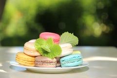 Kleurrijke Franse macarons op een witte plaat op de aardachtergrond Royalty-vrije Stock Foto's