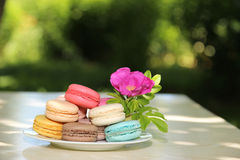 Kleurrijke Franse macarons op een witte plaat op de aardachtergrond Stock Afbeelding