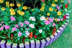 Kleurrijke gardent Stock Foto's