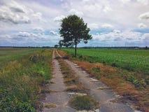 Kleurrijke gebieden en weiden van noordelijk Polen royalty-vrije stock afbeelding