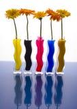 Kleurrijke gerbers Stock Afbeelding