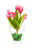 Kleurrijke geïsoleerdel tulpen Stock Foto